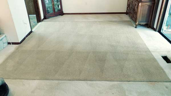Home Chem Clean Carpet Cleaning Of Vancouver